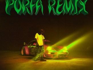 Feid, J Balvin, Maluma, Nicky Jam, Sech & Justin Quiles – PORFA (Remix) Mp3 Download