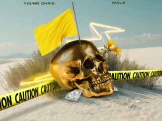 Young Chris & Wale - Yellow Flag Mp3 Download