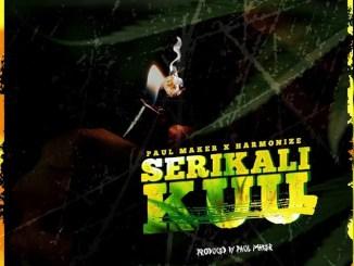 Paul Maker – Serikali Kuu Ft. Harmonize Mp3 Download