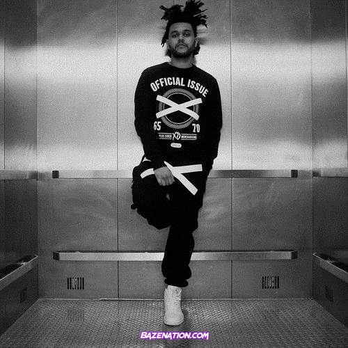 The Weeknd - I Don't Need Love Mp3 Download