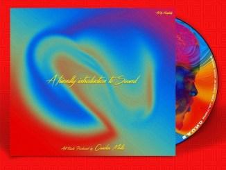 Cracker Mallo – Palanshe ft. Olamide Mp3 Download