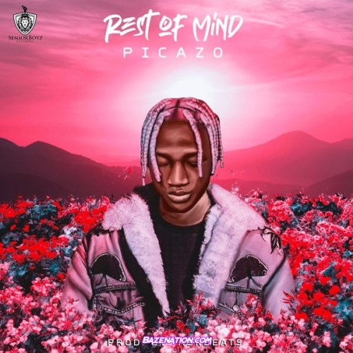 Picazo – Rest Of Mind Mp3 Download
