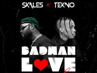 Skales – Badman Love (Remix) ft. Tekno Mp3 Download
