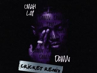 Omah Lay – Damn (Cricket Remix) Mp3 Download