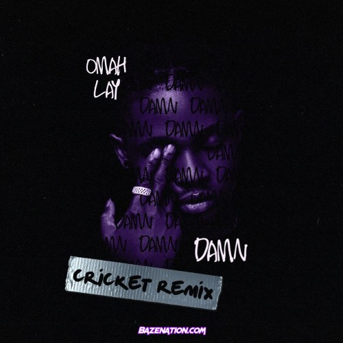 Omah Lay – Damn (Cricket Remix) Mp3 Download