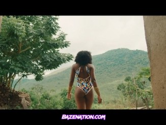 DOWNLOAD VIDEO: Flavour – Looking Nyash