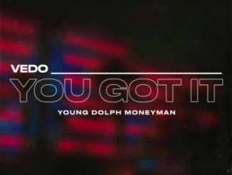 Vedo - You Got It (Remix) ft. Young Dolph x Money Man Mp3 Download