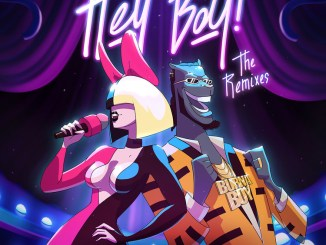 DOWNLOAD EP: Sia – Hey Boy (The Remixes) [Zip File]