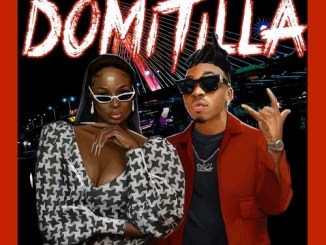 Lisa Yaro - Domitilla ft. Mayorkun Mp3 Download