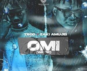 Trod - OMI (Water) Ft. Zaki Amujei Mp3 Download