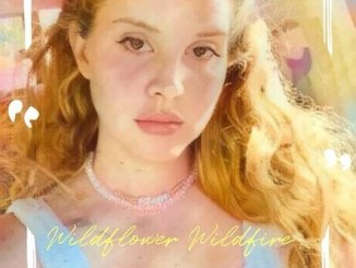 Lana Del Rey - Wildflower Wildfire Mp3 Download