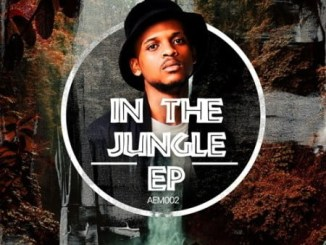 BlaQRhythm – In The Jungle Mp3 Download