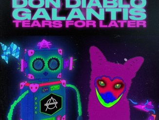 Don Diablo & Galantis - Tears for Later Mp3 Download