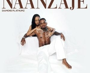 Diamond Platnumz – Naanzaje Mp3 Download