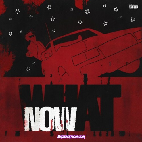 DC the Don - WHAT NOW? Mp3 Download