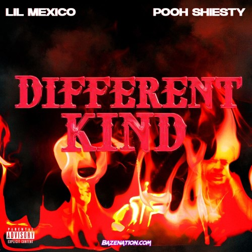 Lil Mexico & Pooh Shiesty - Different Kind Mp3 Download