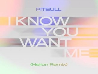Pitbull - I Know You Want Me (Calle Ocho) [Helion Remix] Mp3 Download