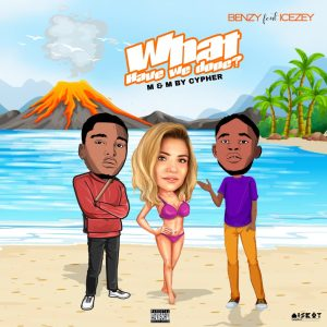 Benzy ft Icezey - What Have We Done