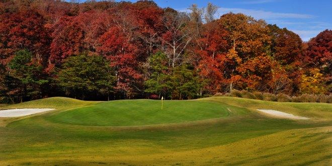 Tennessee Centennial Golf Course to celebrate International Women's Golf Day with deals, clinics