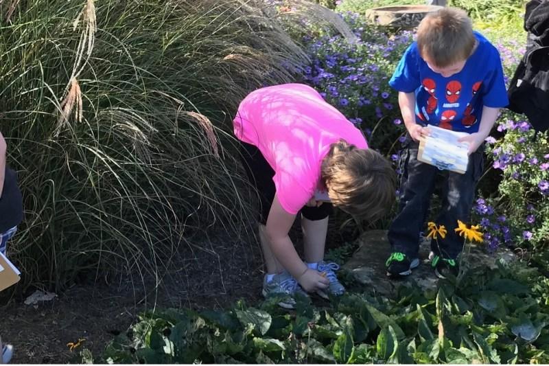UT Plateau Discovery Gardens to Teach Teachers