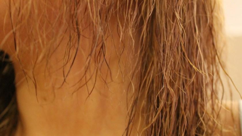 bleach hair damage DIY treatment
