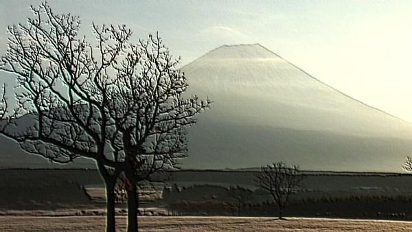 暁の朝霧高原(2006年12月)