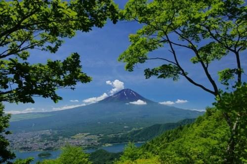 投稿者:三島のやまさん 場所:新道峠(2010年7月19日)