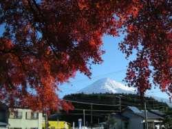 富士山も良く見えます。