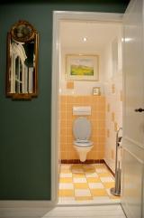 <h5>Toilet</h5>
