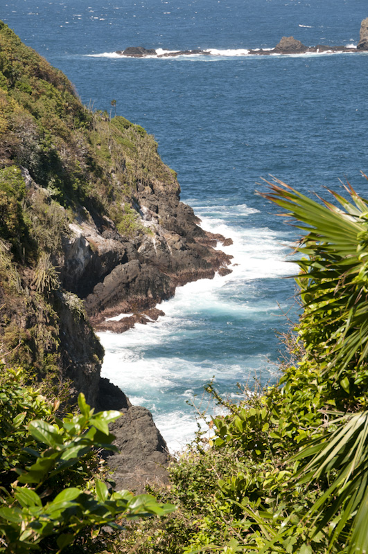 A view from the top of Little Tobago.