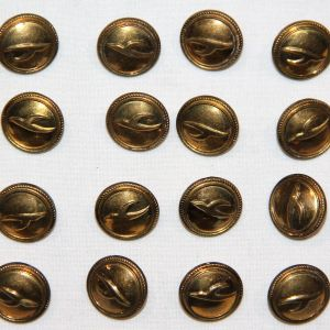 U002. DESERT STORM BRING BACK LOT OF 24 IRAQI OR KUWAITI BUTTONS