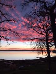 161203bbcut-sunrise1