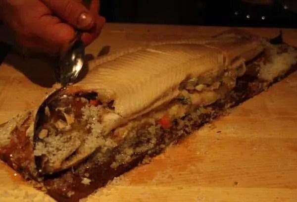 Lachsforelle von Fett befreien