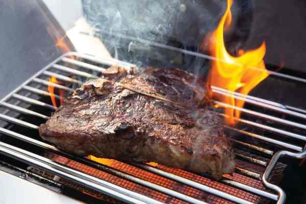Napoleon Prestige PRO665 Natural Gas and Propane Grills
