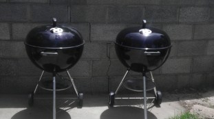 Double Weber Silvers