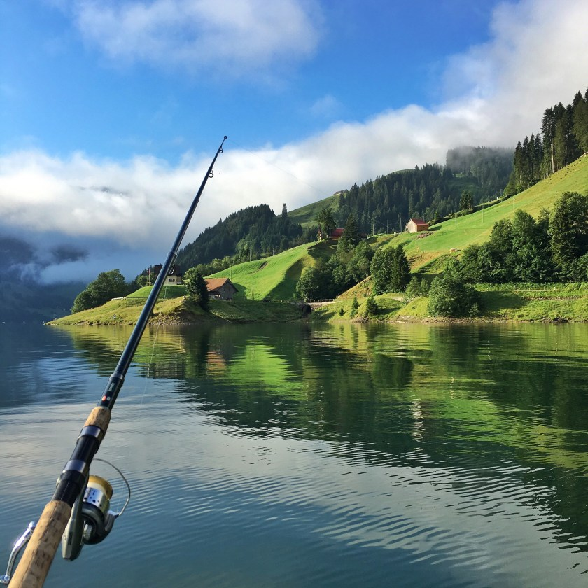 Fishing rod with its line cast in a lake on the side of a green hilly landscape.