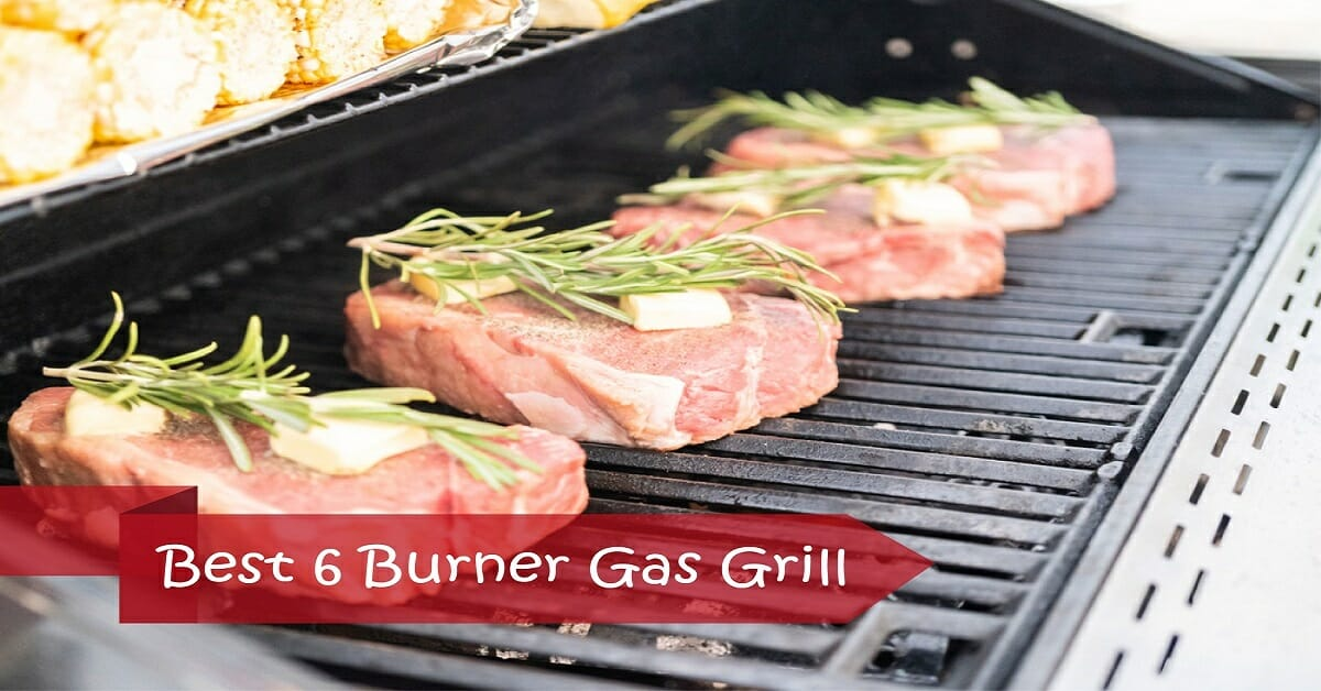 Top 7 Best 6 Burner Gas Grills in 2020 (The Ultimate Guide)