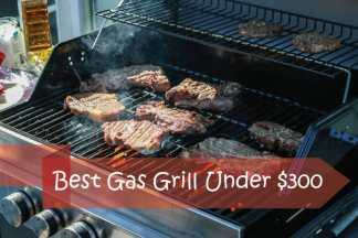Best Gas Grill Under 300