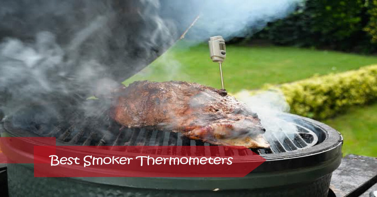 5 Best Smoker Thermometers in 2020: For Grilling and Smoking
