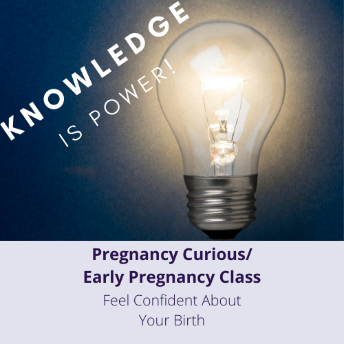 Pregnancy Curious/Early Pregnancy Class