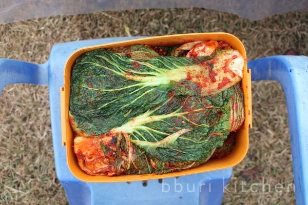 After packing a container full of kimchi, place two leaves on top as a protection against the air.