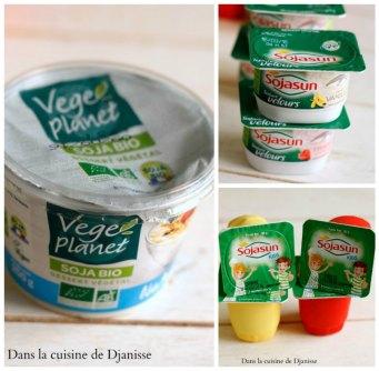 Collage yaourt 1