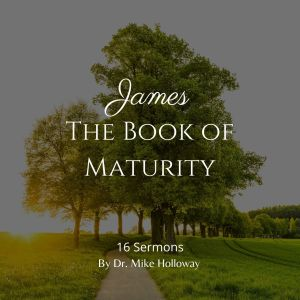 James – The Book of Maturity