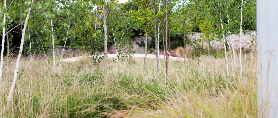 02 - Garden of Reflection - BCA Landscape (Photographer - Karl Glenn)