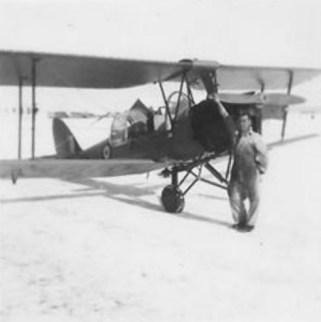 Tiger Moth 2