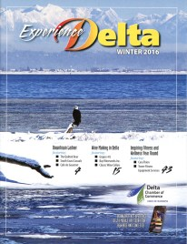 2016 experience delta cover