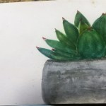 Cactus painting watercolour
