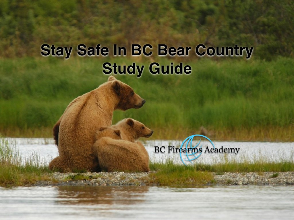 A free online study guide to help you stay safe in the bear country of BC