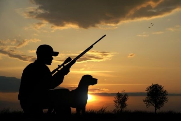 Safely Carrying Firearms While Hunting