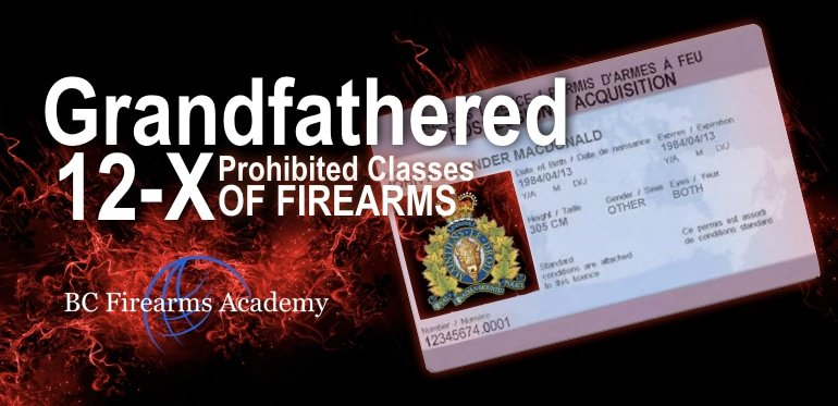 Prohibited Classes Of Firearms 12-2, 12-3, 12-4, 12-5, 12-6, 12-7 ( 12-9 ?)